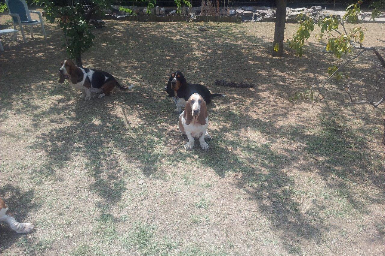 Tuin / playground